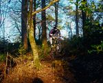 mountain-bike-539473.jpg