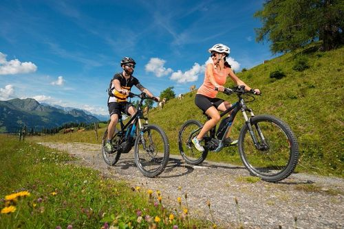 Workshop E-Bike Angebot