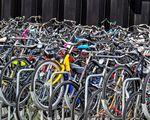 bike-2669639.jpg