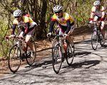 cycling-183476.jpg